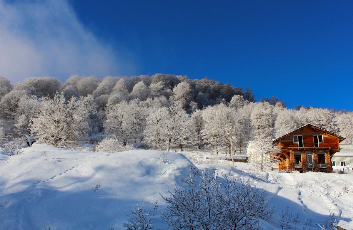 бакуриани горнолыжный курорт фото домашних условиях