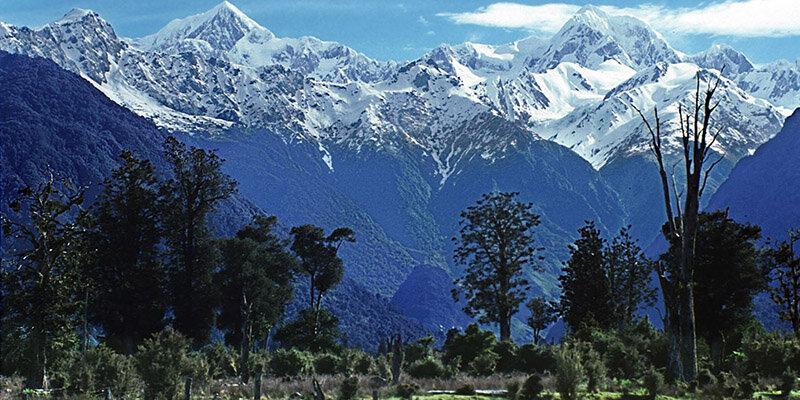 Национальный парк Вестленд Таи Поутини в Новой Зеландии