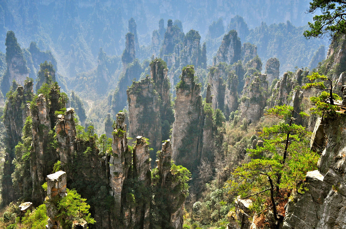 национальный парк чжанцзяцзе китай фото плитка