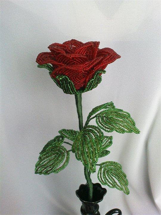 просмотренные как можно продавать цветы из бисера в краснодаре нашем
