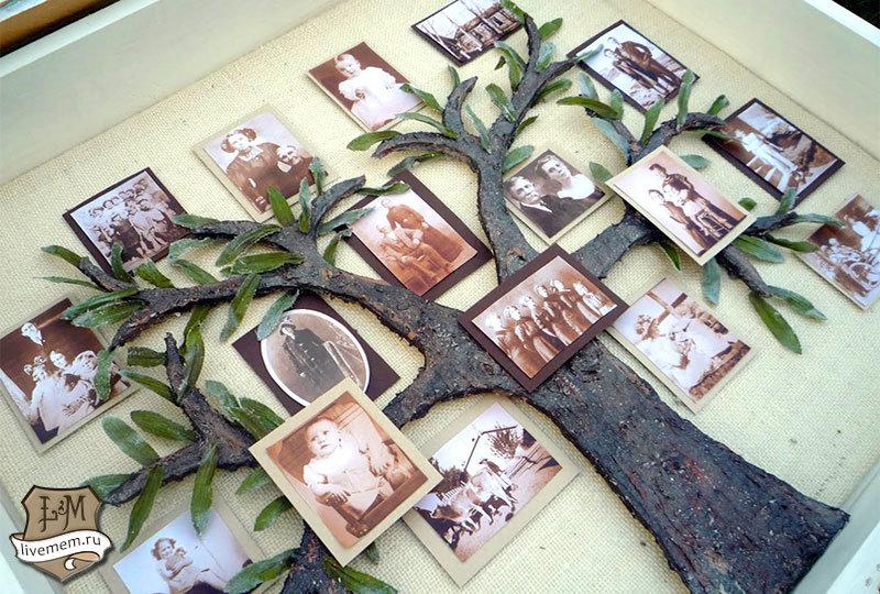 Родословное древо семьи своими руками - У меня растут года 50