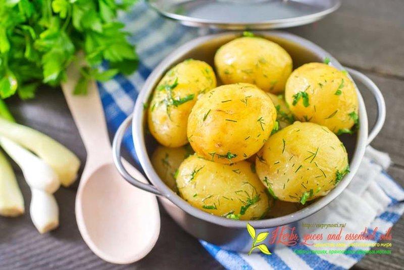 Интересная статья про специи для картофеля, вкусные способы приготовления картофеля с пряностями, рецепты с фото и видео от шеф-поваров
