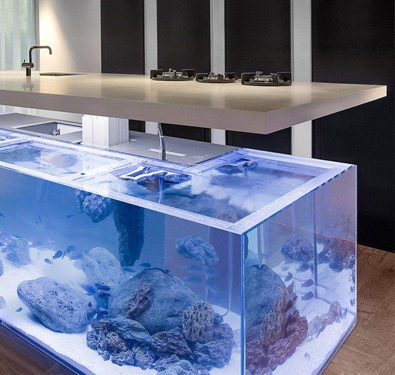 предоставляем фото аквариум барная стойка собирались