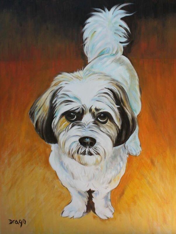 Работы художника Drago Milic   Собака и Кошка - все о домашних животных