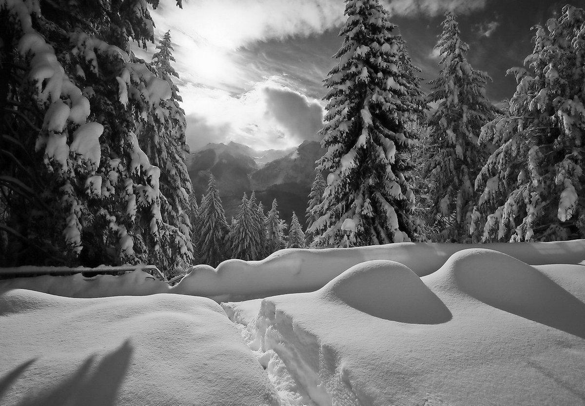 заглушки, применяющиеся черная зима картинки кастрюлю огонь ждем