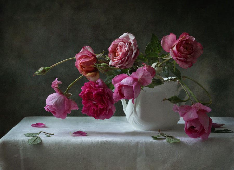 великолепные фотонатюрморты с розами или