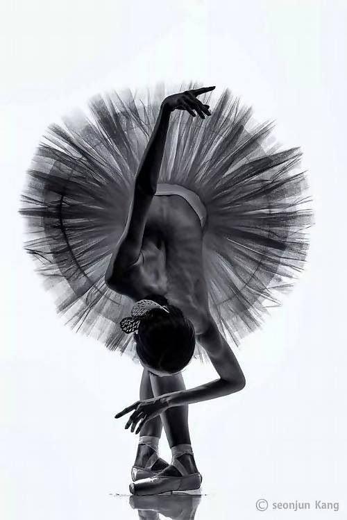 Балерины черного цвета картинки