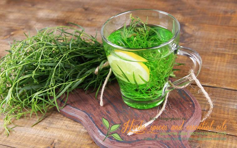 В этой статье мы рассмотрим тархун или эстрагон - ароматную пряную траву, известную с давних времен, благодаря своему душистому пикантному аромату.