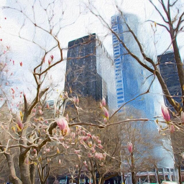 #New_York #Park #Manhattan #USA #NY #Spring Spring in NY