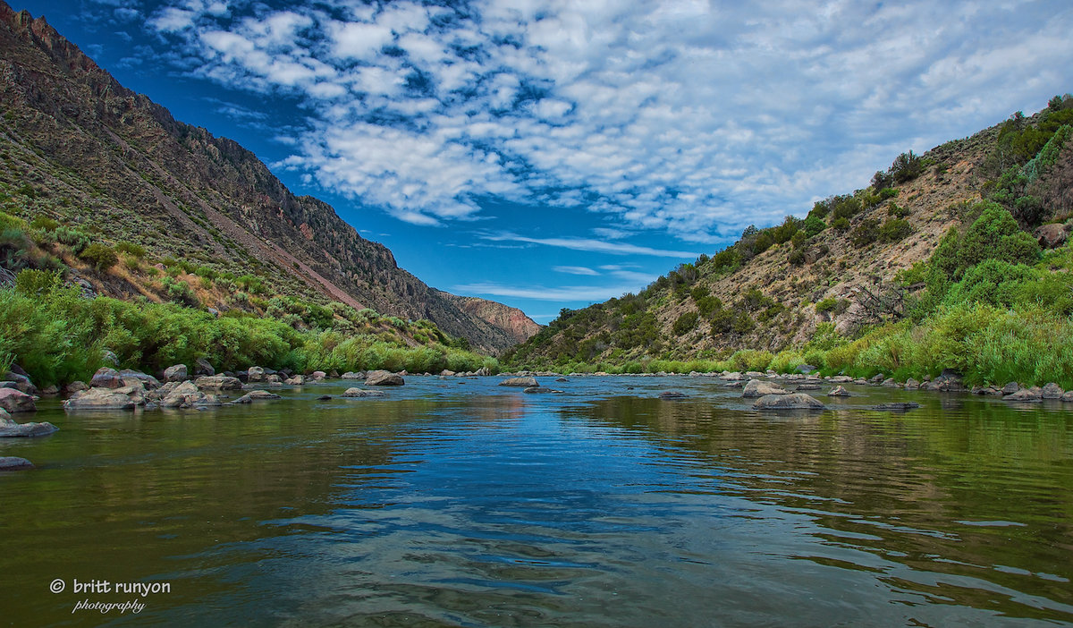 settling the rio grande valley Texas parks and wildlife 2014 birds of bentsen-rio grande valley state park world birding center a field checklist.