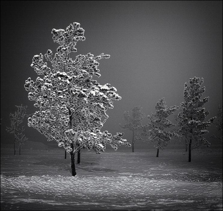 Доброе утро нового года картинки красивые зимние с пожеланиями рейтинг бойцов