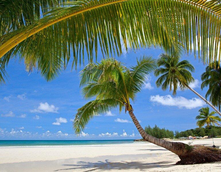 Полуостров де Самана (Península de Samaná) – это узкая полоса солнечной нирваны на северном побережье Доминиканской Республики
