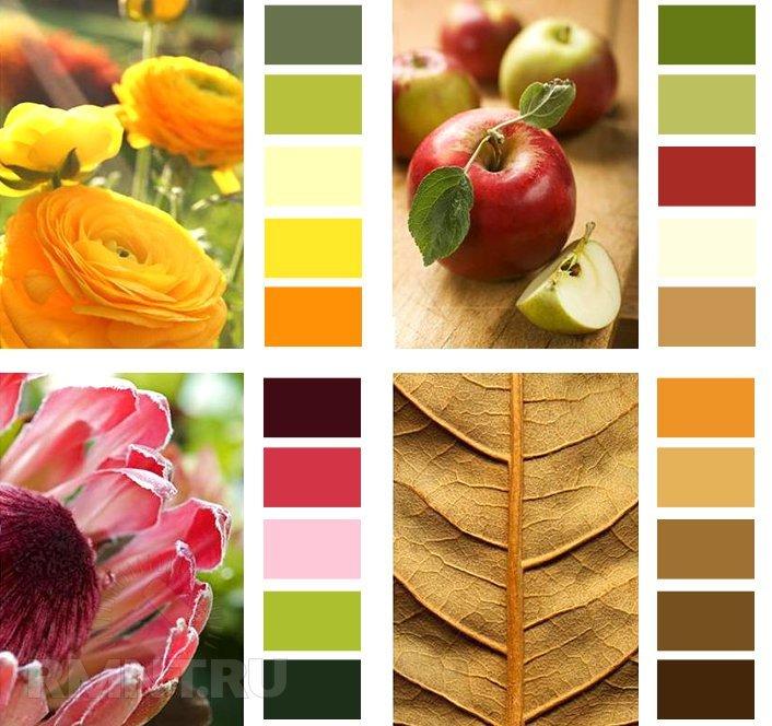 ребенок подобрать палитру цветов по картинке помощью мастер-классов