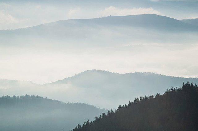 Блуждающий туман