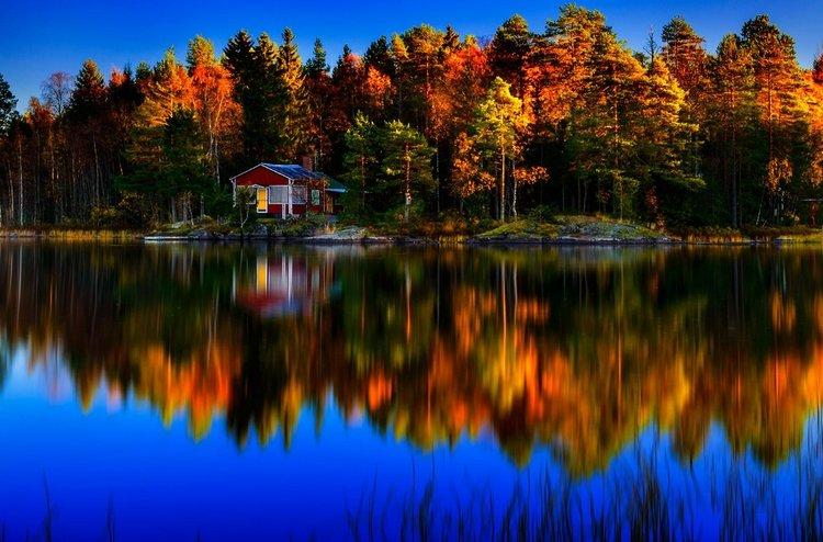 Домик в осеннем лесу. Фото: Marek Czaja