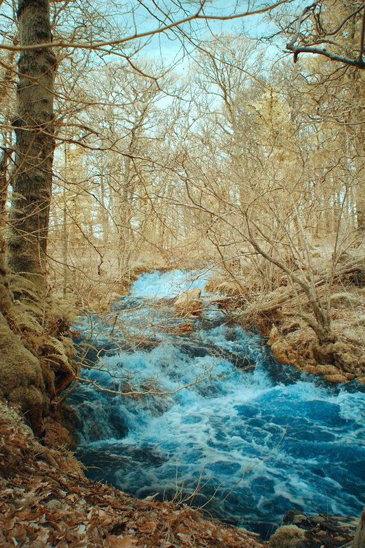Инфракрасное фото воды