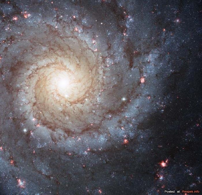 Космос (30 фото) :: Красивые фото - Фото-блог Respek!