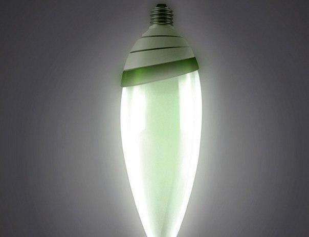 Песочница WebPark.ru | Algaebulb - лампочка, которая работает от энергии водорослей