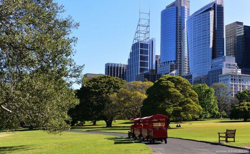Трамвайчик. Ботанические сады Сиднея