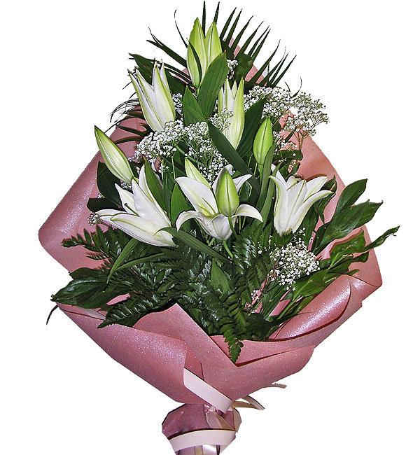 Новосибирск сфинкс, лилии заказать букет в москве недорого