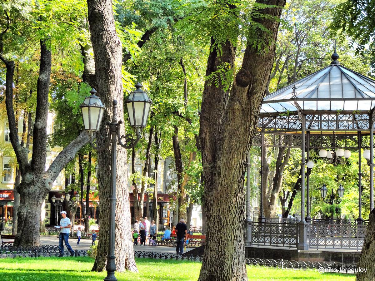 видом городской сад одесса фото души поздравляю фарфоровой
