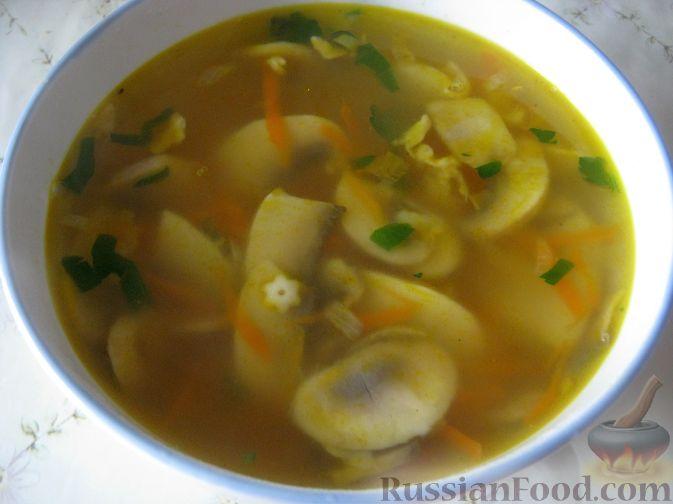 грибной суп рецепт из свежих грибов с фото
