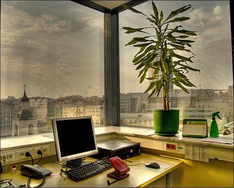 Организация рабочего места по фен-шуй фото 6