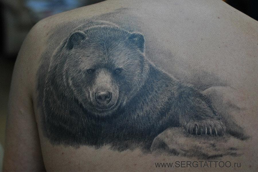 что означает картинка медведя более что