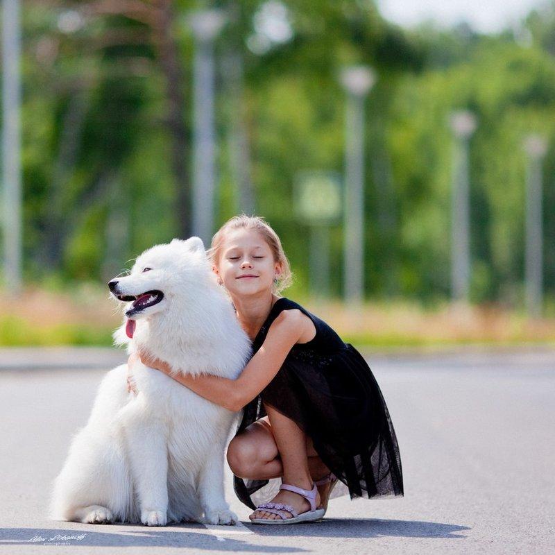 Объединение Творческих Компаний. » События » Съёмка с самоедскими собаками