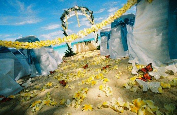 Оформление места для выездной церемонии бракосочетания