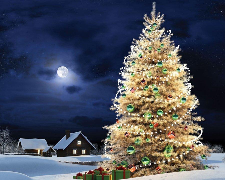 Новогодняя елка открытки и фотографии