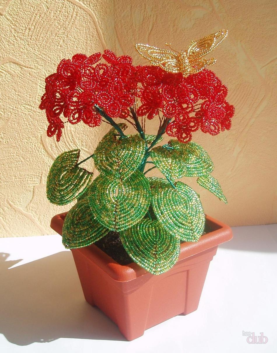 Комнатные растения из бисера фотоархив