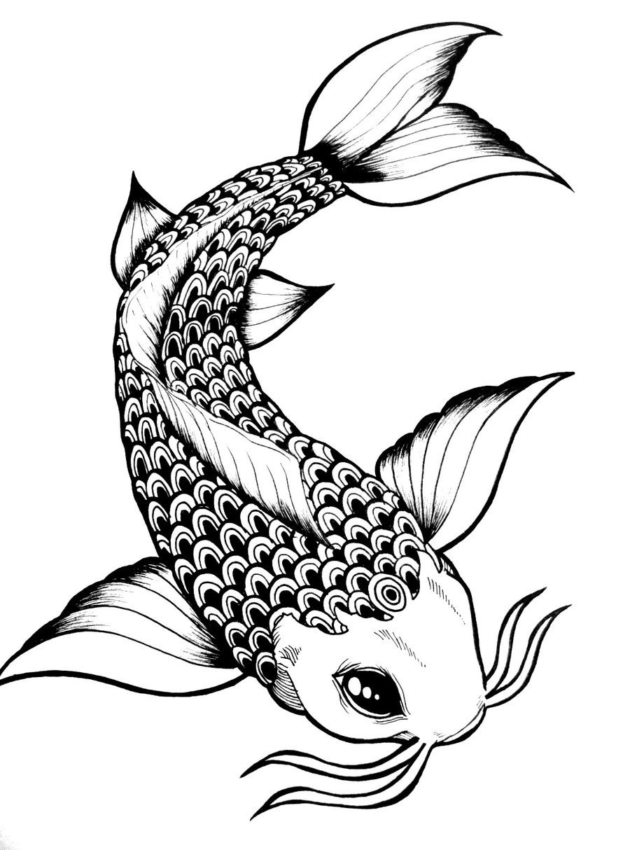 Images of Black Koi Fish - #rock-cafe