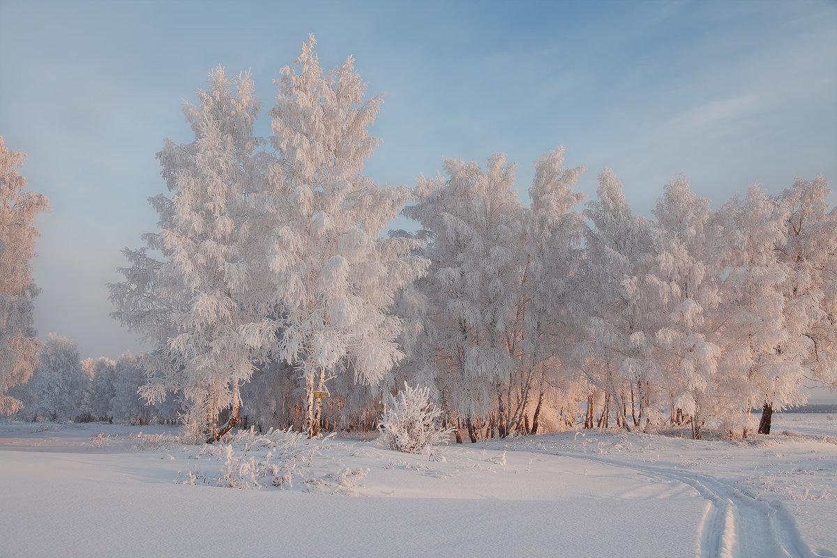 полуострова фотография пейзаж зимушка проза день