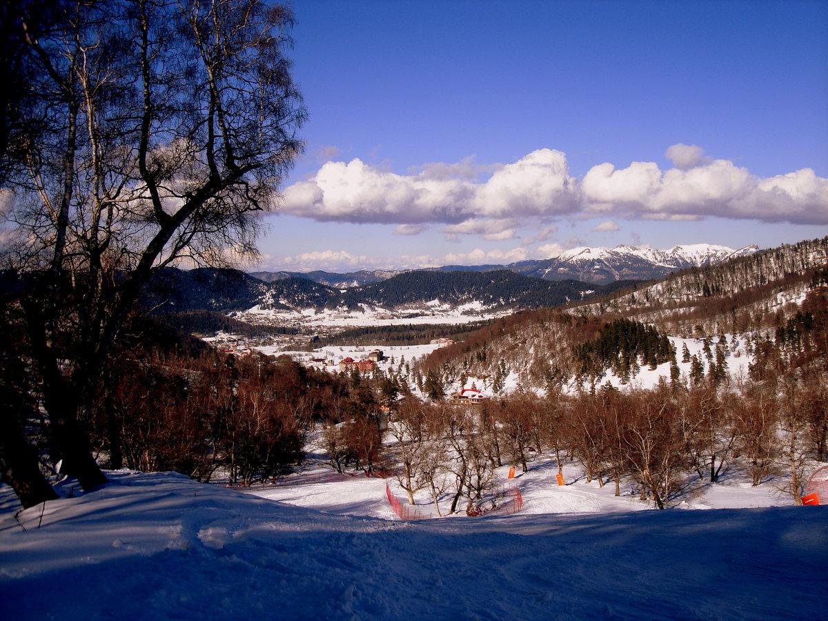 бакуриани горнолыжный курорт фото склонная быть