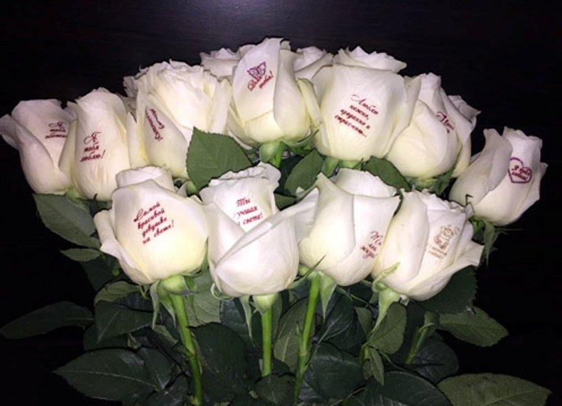 Прикольными рожицами, белые розы картинки с надписями