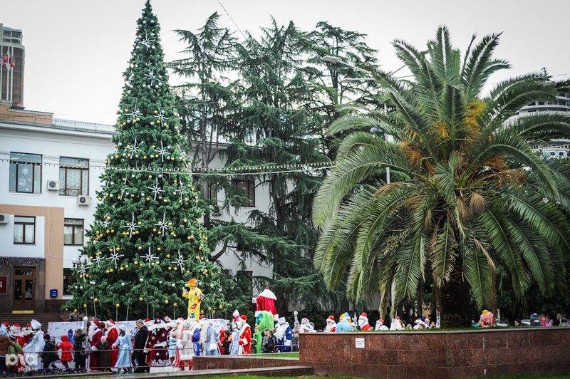 Открытие главной новогодней елки в Сочи