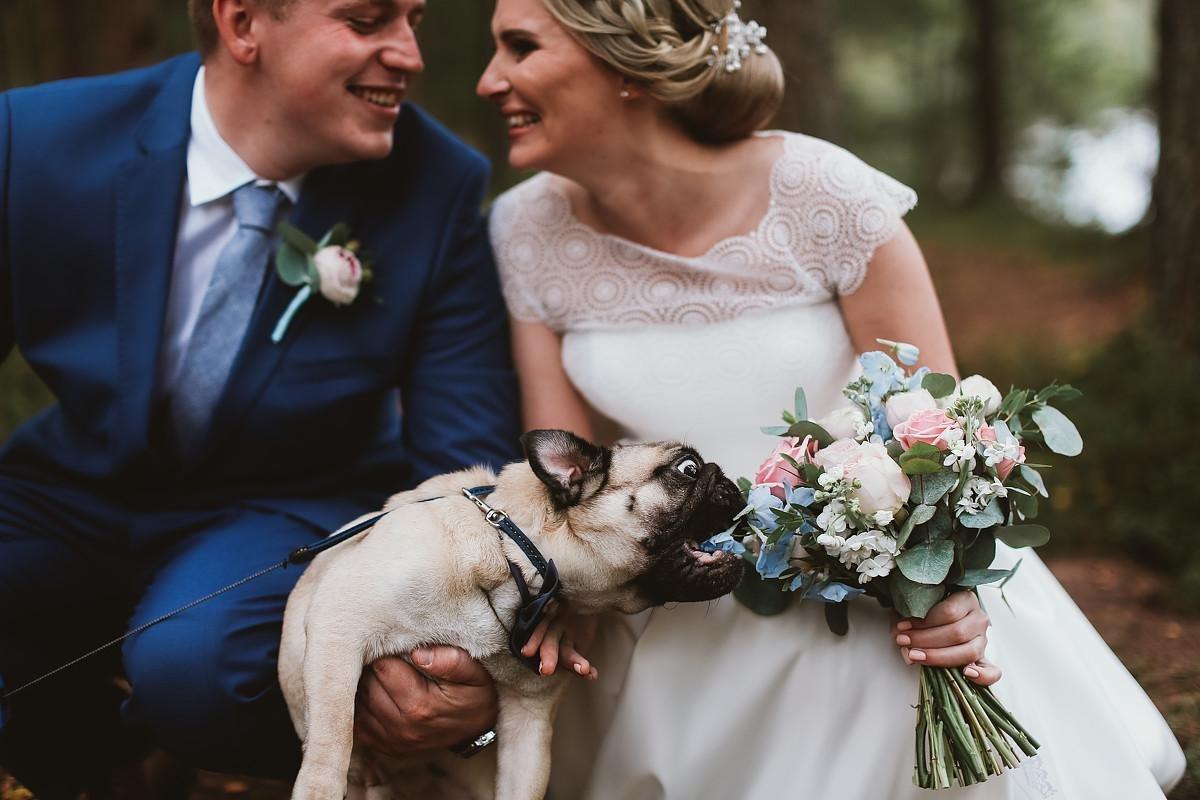 Прикольный свадебные картинки, картинки для смартфонов