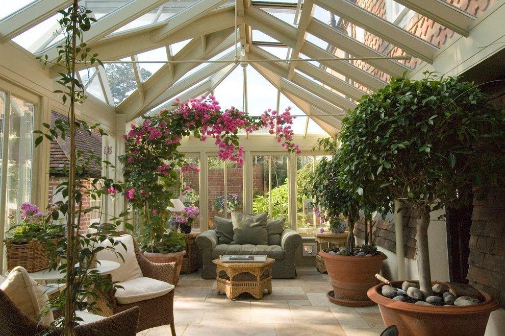 комнатные цветы для зимнего сада