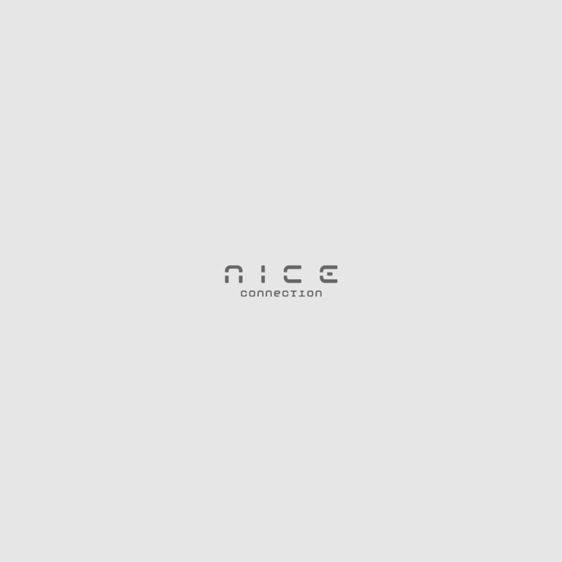 Логотип для сети магазинов Nice Connection