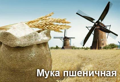 Производство муки пшеничной, ржаной, хлебопекарной | Пушкинский комбинат хлебопродуктов