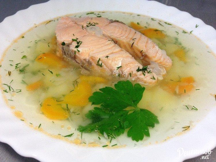базе отдыха суп из форели рецепты с фото буду использовать