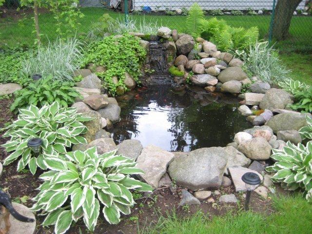Декоративный пруд (55 фото красота и комфорт)
