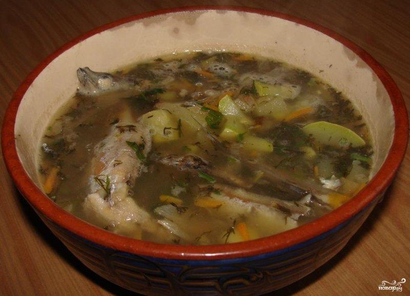Суп из мойвы рецепт с фото