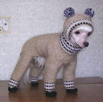 одежда для маленьких собак вязаная своими руками схемы вязания