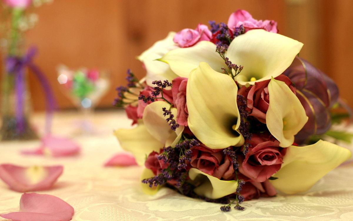 фото открытки с необычными цветами красивые искал