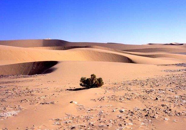 Картинки анимации пустыня, картинки пушкин открытки