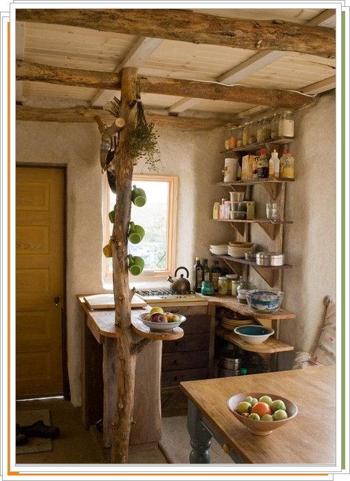комнатные цветы фото и названия для кухни