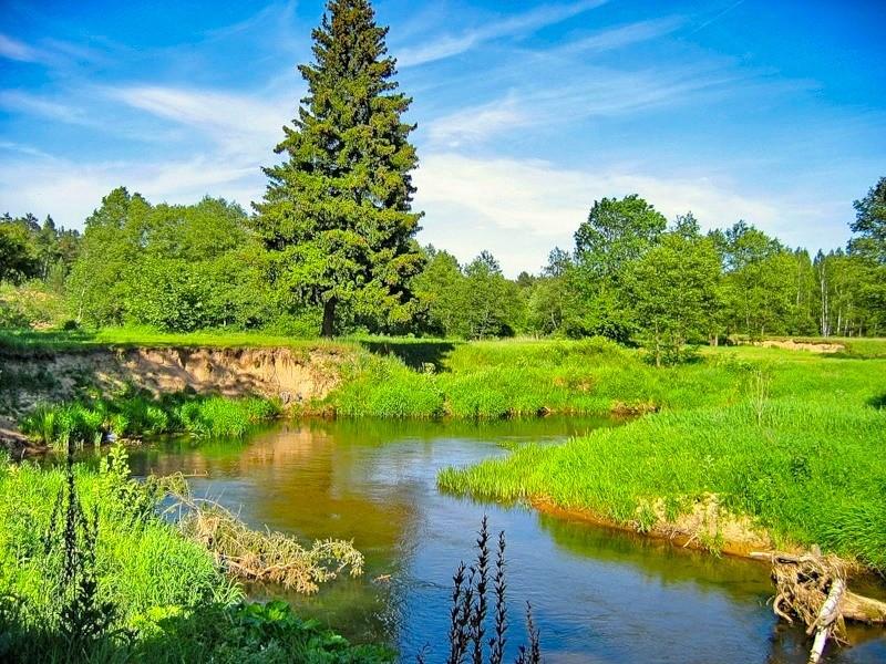 картинки природа беларуси