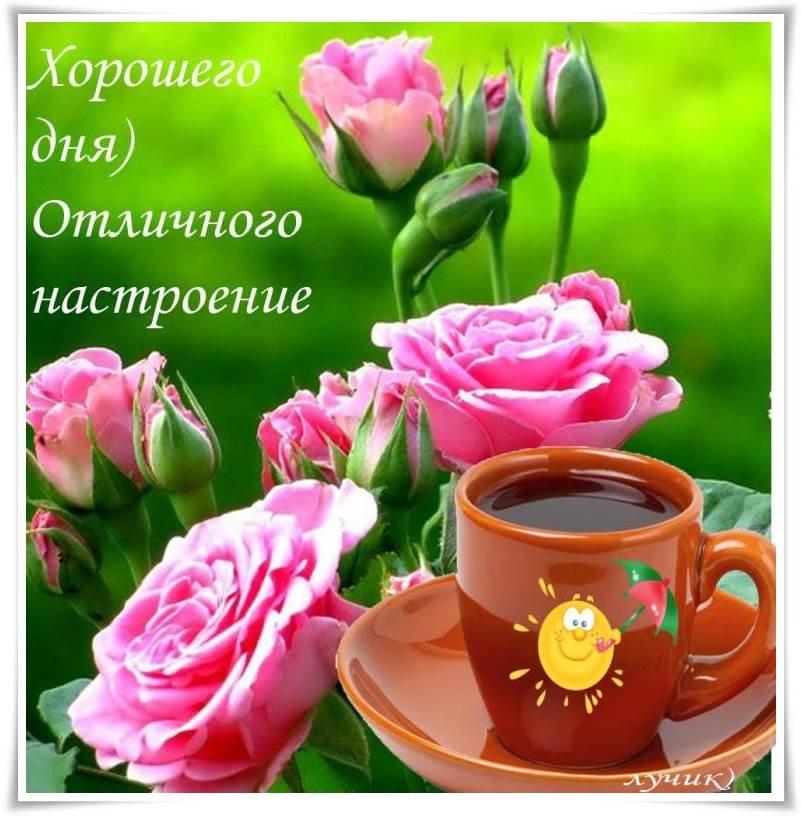 Красочные открытки с пожеланиями доброго дня, большом